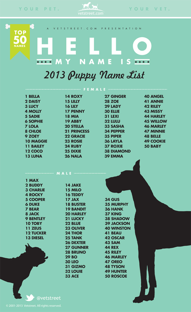 Dog List Popular Puppy Names