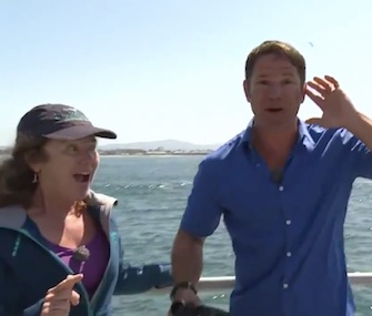BBC One's Steve Backshall was thrilled to see a blue whale during a live TV interview.