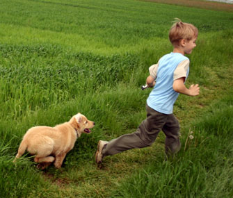 Dog nipping at boy's heels