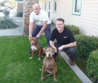 Brownie, left with Ted, has a happy new home and a doggie sibling, right.