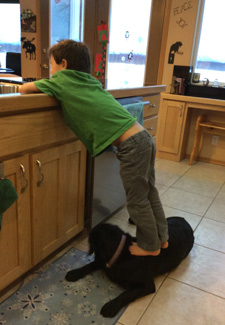 Sarah Palin's photo of her son Trig standing on dog