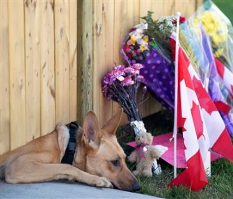 A dog belonging to Cpl. Nathan Cirillo, who was killed by a gunman in Canada, lays by a memorial outside the fence at his home.