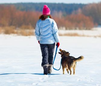 aaca0842cf6 Cold Weather Safety: How to Prepare Your Pet for Winter