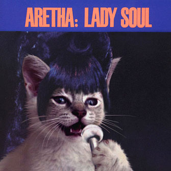 Kitten Covers Aretha Franklin