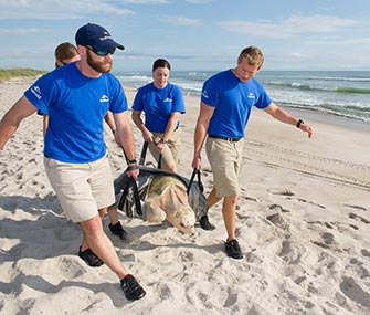 SeaWorld Orlando's animal rescue team returns a sea turtle to its natural habitat in Florida.
