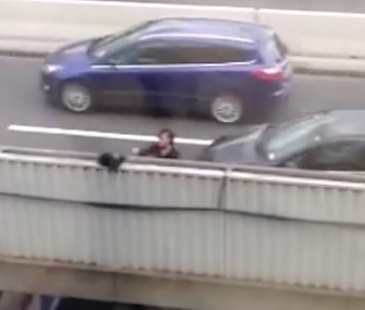 A group of London office workers came to the rescue on a cat they spotted perched on a bridge.