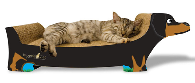 Wayfair Doxie scratcher for cats