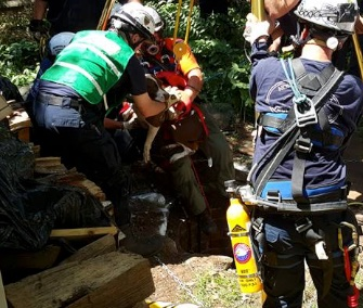 Firefighters from around Norfolk County, Massachusetts, came to the rescue of a dog who fell down a 35-foot well.
