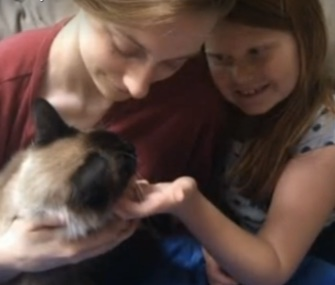 A cat rescue volunteer in Hawaii helped reunite Bogie with his family in Detroit.