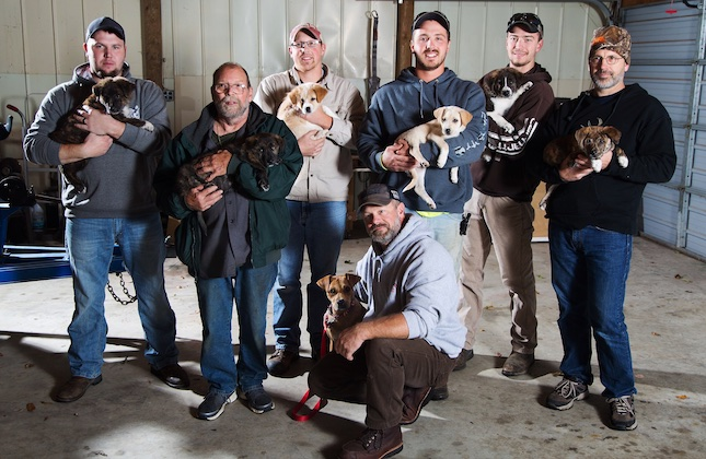 A bachelor weekend became a rescue mission for a stray dog and her seven puppies.