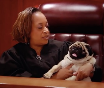Sabrina Johnson, a district court judge in Michigan, adopted Mikey, a blind Pug.