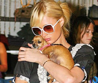 Paris Hilton shared this photo of herself and Tinkerbell with news that the dog had died at age 14.