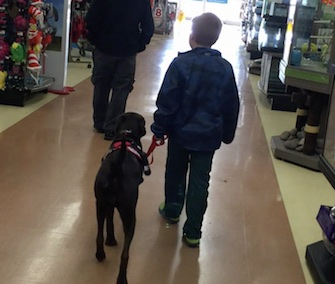 Aiden Heath, 8, is happily getting to know his diabetes alert dog, Angel.