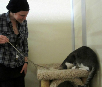 Theo the cat and a volunteer