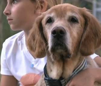 Honey had an emotional reunion with her family after being found 600 miles from home.