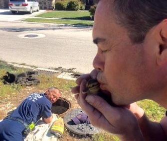 One of the Idaho firefighters gave a rescued duckling a kiss before sending it back to its mom.
