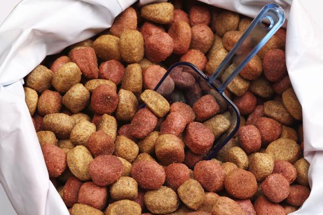 Bag of Dog Food