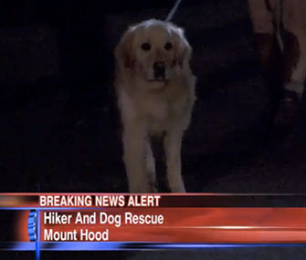 Ranger and his owner were rescued from a Mount Hood cliff.