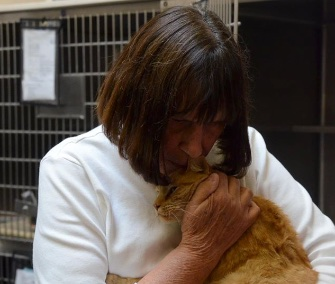 Owner Nancy Payne was reunited with her missing cat, Ginger, after eight years.