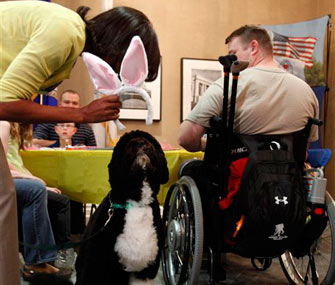 Michelle Obama putting bunny ears on Bo for Easter