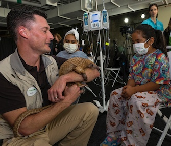San Diego Zoo Ambassador Rick Schwartz introduces an animal to a patient at Rady Children's Hospital.