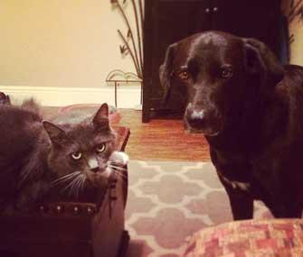 Trixie and Rudi