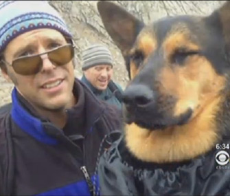 Hikers rescue dog wounded on mountain top