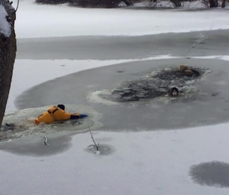 Firefighters in Guilford, Connecticut, rescued two Huskies from an icy pond.