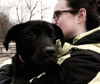 A TV news crew came to the rescue of a dog who was trapped on the ice on Lake Erie for several days.