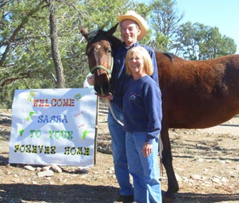 Sasha the horse with her new family