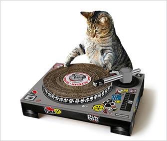 a cat dj with scratch pad