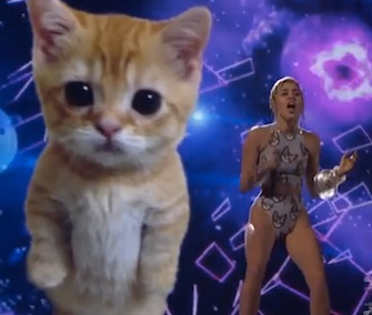 Miley Cyrus performed at the AMAs with a giant cat lip synching on a screen behind her.