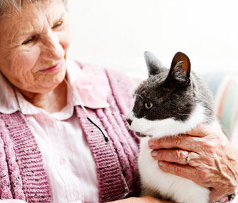 pets for the elderly Dogs are called man's best friend for a good reason, but canines aren't the only pets that will likely assist in the quest for the better quality of life of a person inhabiting his or her senior years.