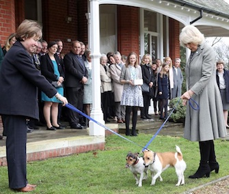 Camilla, Duchess of Cornwall, visited a U.K. animal shelter with her own two rescue pups.