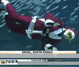A diver dressed as Santa swims with sardines in South Korea.