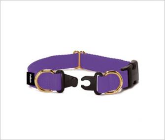 Breakaway collar