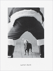 holiday cards for pet lovers - Pet Holiday Cards