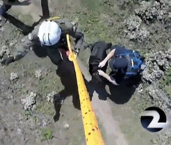 Oreo was rescued from the side of a cliff in California by a helicopter crew.