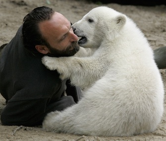 Knut plays with his keeper, Thomas Doerflein, at the Berlin Zoo in May 2007. The bear died in March 2011.