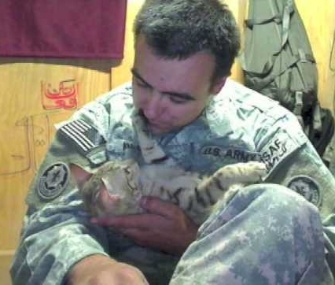 Koshka, here with Staff Sgt. Jesse Knotts, was named ASPCA Cat of the Year.