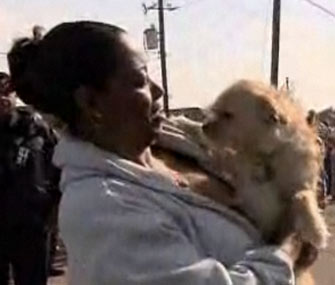 Tornado survivor is reunited with her puppy, Brownie.