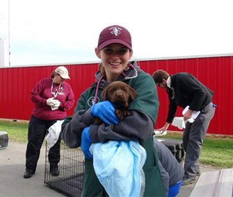 A member of the Texas A&M team holds a chocolate Lab puppy who they are treating.