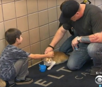 Navy reservist Brad VanCleave and his son greet Mr. Meowgi.