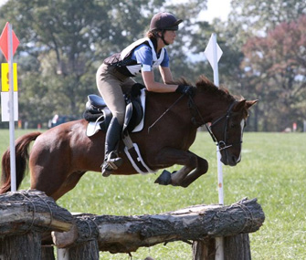 Horse jumping over poles