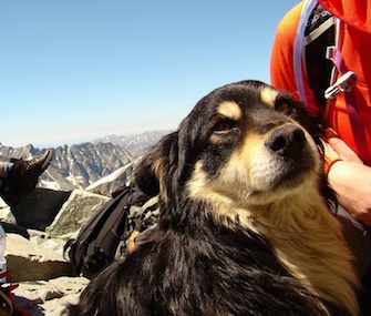 Rysa was saved from an 8,200-foot mountain top in Poland by a group of climbers.