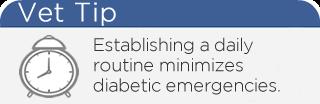 Diabetic Emergency Vet Tip