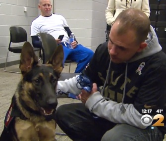 An Iraq war veteran was surprised with Scarlet, a service dog, at a Giants game Sunday.