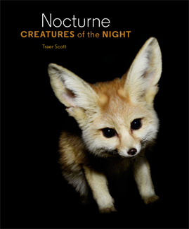 'Nocturne: Creatures of the Night' by Traer Scott cover