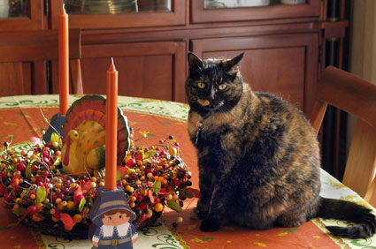 Give Thanks For Family And Family Pets