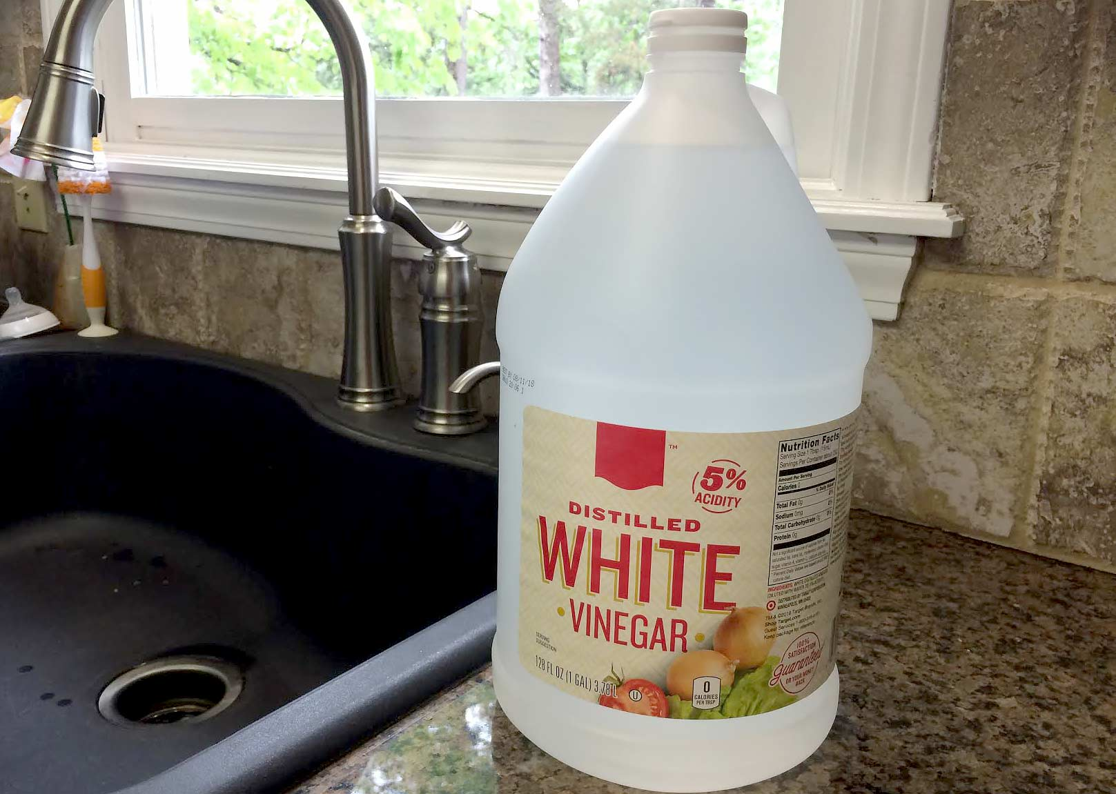 How To Remove Dog Urine From Carpet Vinegar Home Plan